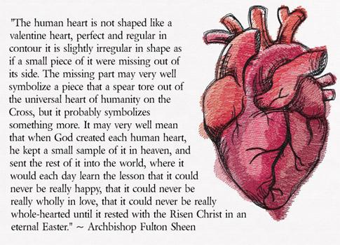 humanheart-ArchbSheen